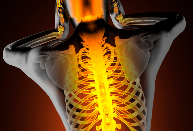 Best Practices for Establishing Vertebral Level on Thoracic Spine Studies in MRI