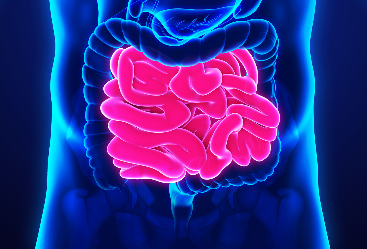 Current Trends in Small Bowel Imaging